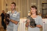 Итоги всемирной выставки кошек